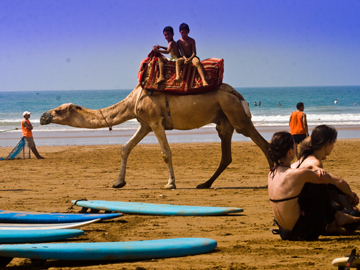 Surfing Morocco