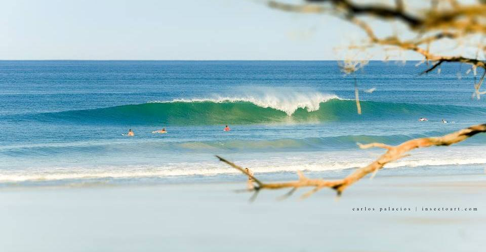 Kalon Surf - The Luxury Surf Coaching Resort in Costa Rica