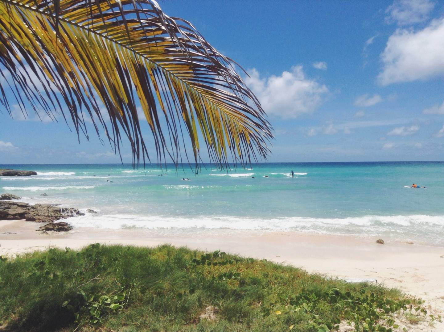 Best Beginner Surf Beaches in Barbados