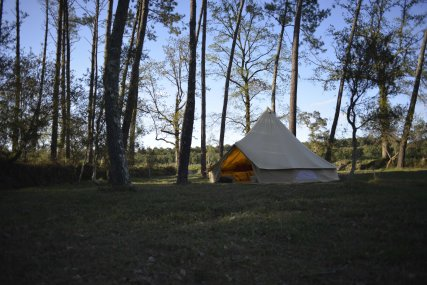 Ocean Shelter garden with one of the tipis