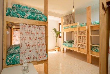 Surf Hostel Shared bedroom
