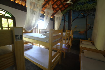Shared room with 12 beds